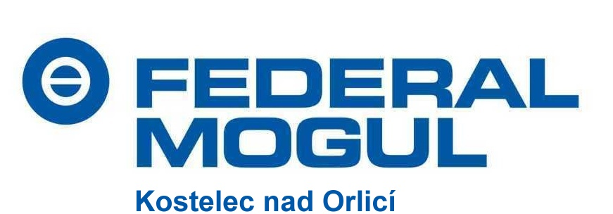 Federal-Mogul Friction Products